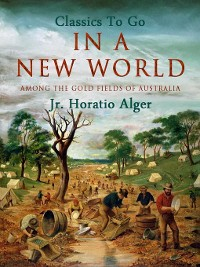 Cover In a New World