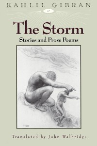 Cover The Storm