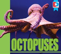 Cover Octopuses
