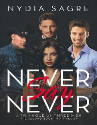 Cover Never Say Never: A Triangle of Three Men the Second Book In a Trilogy