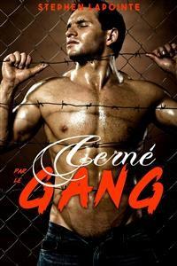 Cover Cerné par le GANG