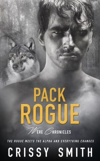 Cover Pack Rogue