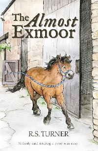 Cover The Almost Exmoor