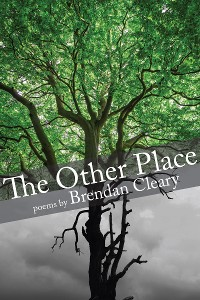 Cover The Other Place
