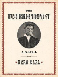 Cover The Insurrectionist
