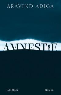 Cover Amnestie