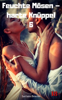 Cover Feuchte Mösen – harte Knüppel 6