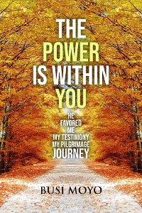 Cover The Power Is Within You