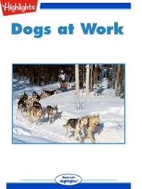 Cover Dogs at Work