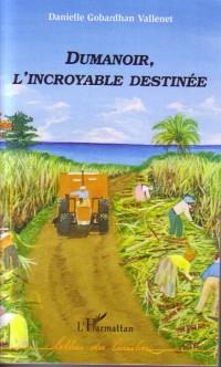 Cover Dumanoir l'incroyable destinee