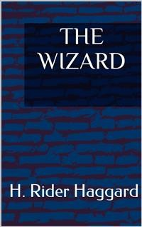 Cover The Wizard