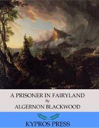 Cover Prisoner in Fairyland