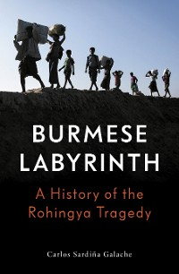 Cover The Burmese Labyrinth