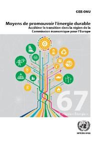 Cover Voies d'accès à l'énergie durable