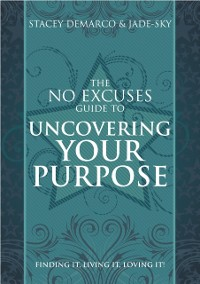 Cover No Excuses Guide to Work & Purpose