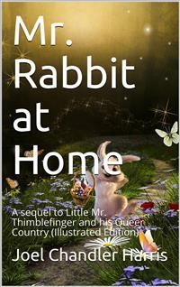 Cover Mr. Rabbit at Home / A sequel to Little Mr. Thimblefinger and his Queer Country