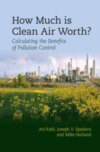 Cover How Much Is Clean Air Worth?