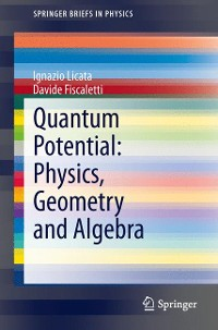 Cover Quantum Potential: Physics, Geometry and Algebra