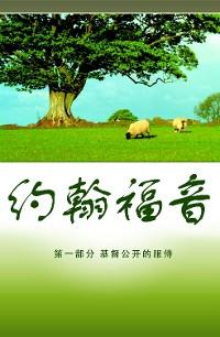 Cover 约翰福音 (Gospel of John)