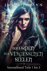 Cover Der Orden der vergessenen Seelen