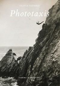 Cover Phototaxis