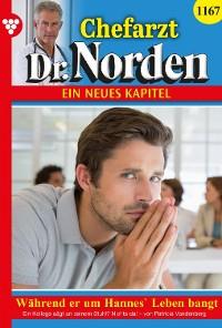 Cover Chefarzt Dr. Norden 1167 – Arztroman