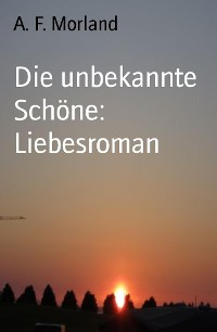 Cover Die unbekannte Schöne: Liebesroman