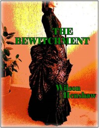 Cover The Bewitchment