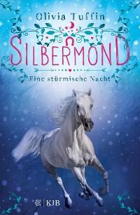 Cover Silbermond: Eine stürmische Nacht