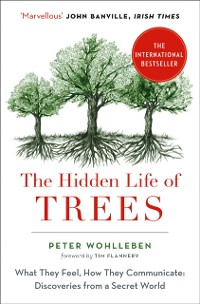 Cover Hidden Life of Trees: The International Bestseller - What They Feel, How They Communicate