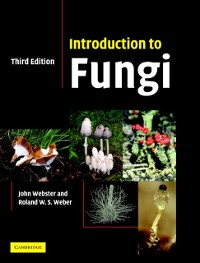 Cover Introduction to Fungi