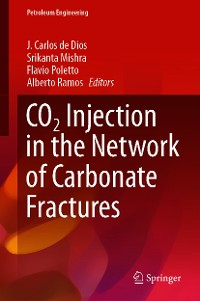 Cover CO2 Injection in the Network of Carbonate Fractures