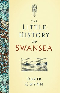 Cover The Little History of Swansea