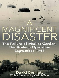 Cover Magnificent Disaster