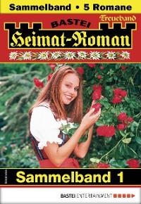 Cover Heimat-Roman Treueband 1 - Sammelband