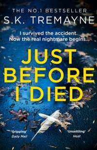 Cover Just Before I Died: The gripping new psychological thriller from the bestselling author of The Ice Twins