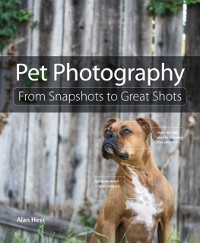 Cover Pet Photography