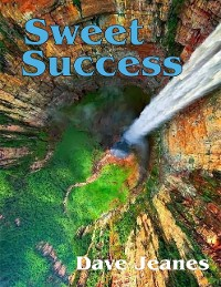 Cover Sweet Success