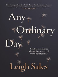 Cover Any Ordinary Day