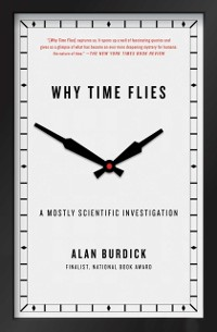 Cover Why Time Flies