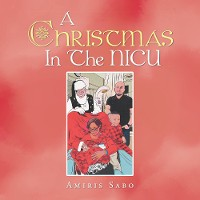 Cover A Christmas in the Nicu