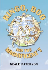 Cover Ringo, Boo and the Magnificent 7