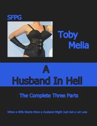 Cover Husband In Hell - The Complete Three Parts
