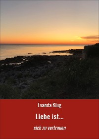 Cover Liebe ist...