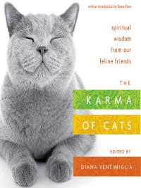 Cover The Karma of Cats
