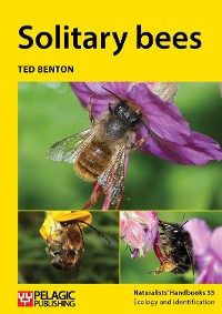 Cover Solitary bees