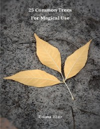 Cover 25 Common Trees for Magical Use