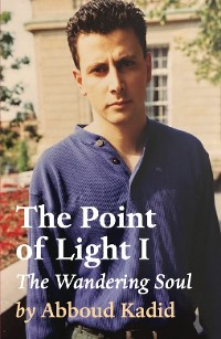 Cover The Point of Light I