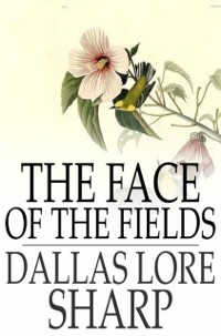 Cover Face of the Fields