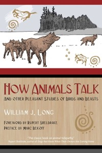Cover How Animals Talk